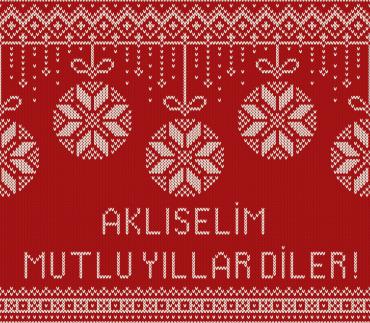 akliselim_ajans_2016